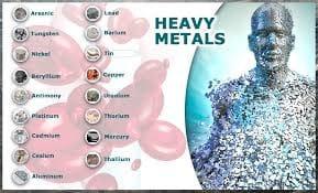 重金属のデトックス法