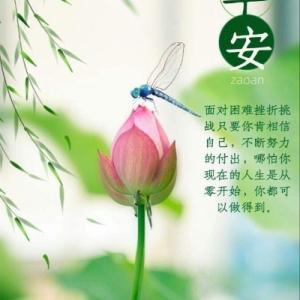 LINE で送られた写真の中国語を翻訳して返送