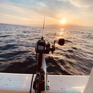 サビキ釣りと小魚釣り