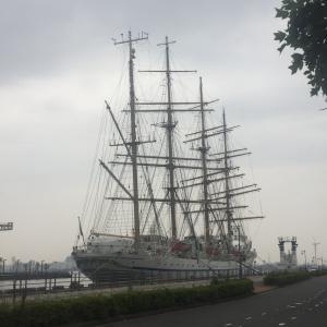 今日の風景  帆船
