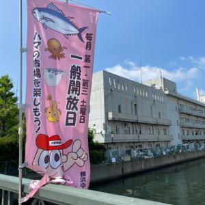 横浜中央卸売市場 一般開放日