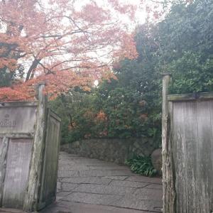 京都での式場選び ④THE SODOH HIGASHIYAMA KYOTO/ザソウドウ東山京都