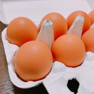 卵が余ったらオイルと蜂蜜でヘアパック!【艶々ヘアケア】