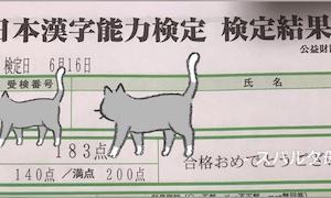 漢字検定結果(昨年分)と、我が家における今後のスタンス
