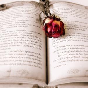 国際恋愛・国際結婚の本!私が読んだものをご紹介!