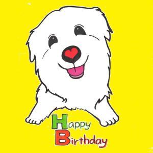 クルーズ君15歳のお誕生日おめでとう☆°。⋆⸜(* ॑꒳ ॑* )⸝