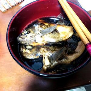 友人、釣ったメバルを食す
