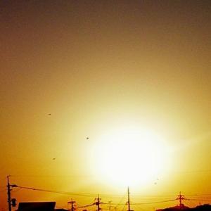 綺麗な夕陽