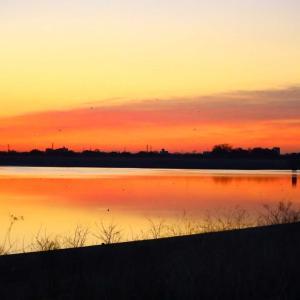 早朝谷中湖周辺で撮った写真達✨