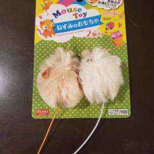 ねずみのおもちゃを買ってみた