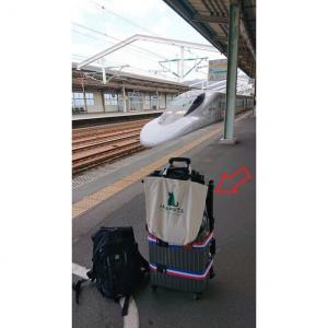 GoTo 無線旅 ~ スーツケースに「玉網の柄」