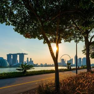 突然ですがシンガポールのキャンプ事情についてちょっと!