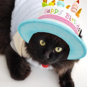 お誕生日おめでとう〜\(^^)/