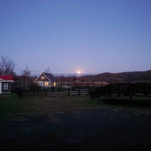 牧場らしい風景