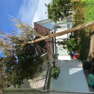 台風15号の修繕の状況
