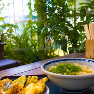 【うどん県】香川ふたたび。讃岐うどんを食べる