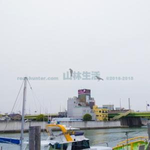 東京23区唯一の自然島「妙見島」は宿泊できるリゾートアイランド