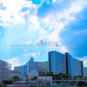 【熱烈歓迎】川口芝園団地は日本の九龍城砦となるのか
