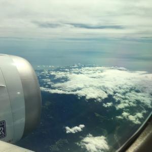 【グレタさん16歳】飛行機は環境に悪い?flygskamという考え方で航空業界はどうなる?【地球温暖化】