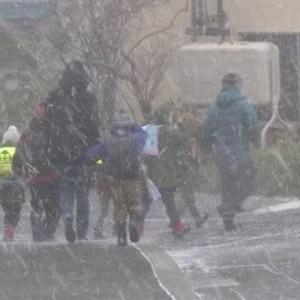 "【nhk news web】   11月14日18:08分、""""北海道で雪伴い非常に強い風吹くおそれ 暴風や高波など警戒を"""""