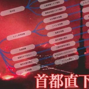"【nhk news web】 (重要記事、保管)   12月6日20:42分、""""「首都直下地震 ; これは、日本の""地獄絵図""に近い」"""""