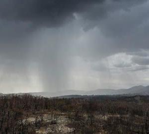 "【CNN】    1月17日13:45分、""""森林火災続くオーストラリアに待望の大雨、新たな災害の恐れも"""""