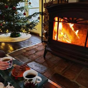 スウェーデンの冬休みと、休み中にやったゲームまとめ2020−2021