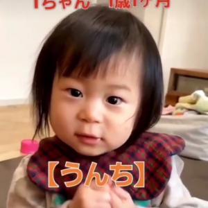 【うんち】ダーン!ベビーサインは話し言葉が遅れる?サインかお喋りか、決めるのは赤ちゃん!