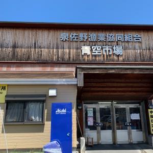 泉佐野、鮮魚市場と農産物市場♪