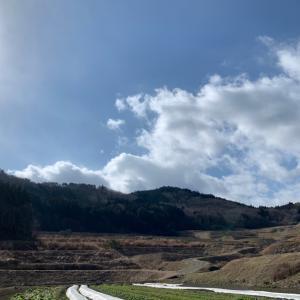 美しい空と大量の・・・
