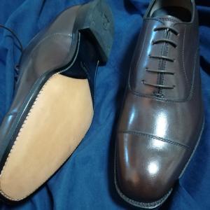 茶色の革靴、プレメンテ