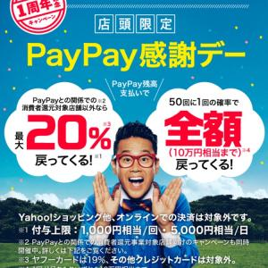 PayPay決済できなかった!!最悪・・・!!