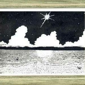 海の打ち上げ花火はseasidehappiness