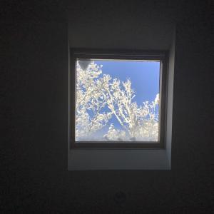 八ケ岳 週末晴れのち雪Ⅱ White&Blue