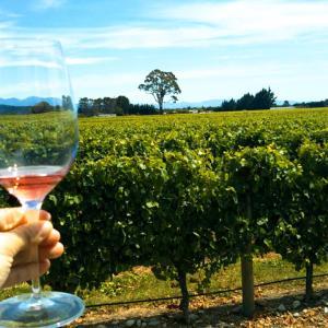 ネルソンのワイナリーめぐり!きれいな景色とワインテイスティング