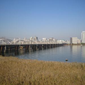 淀川歩きー1(JR大阪駅―淀川―京阪本線枚方市駅)