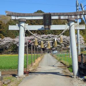 (彫刻)【今宮神社】栃木県佐野市仙波町
