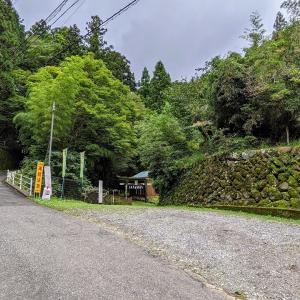 ▲彫刻【諏訪神社】沢沿いにひっそりと佇む:埼玉県飯能市