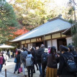 【悲報】北鎌倉の名月院も被害