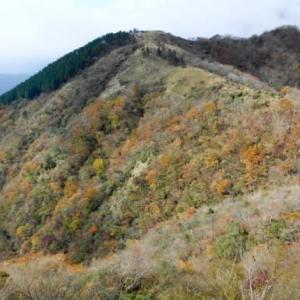 紅葉が終わればすぐに雪景色