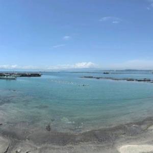 湘南のビーチが白い夏日かな
