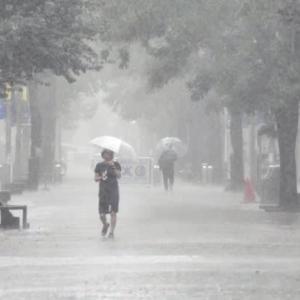 空からの便りさまざま梅雨かな