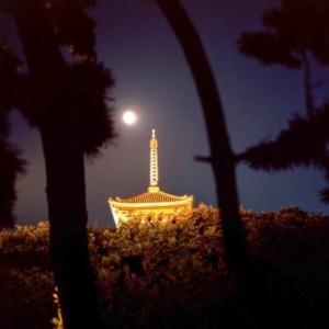 お月見を三渓園で愉しもう