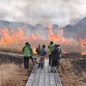 赤々と炎が上がる箱根山焼き