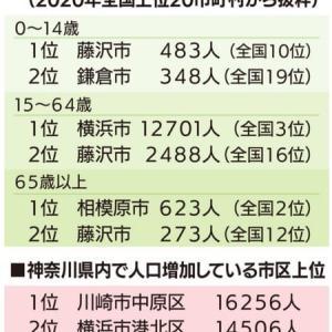 移住者が藤沢の街人口増因