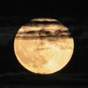 何やかや雲の中には中秋の月