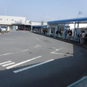 東京近郊も侮れない 三浦半島・浜諸磯の海