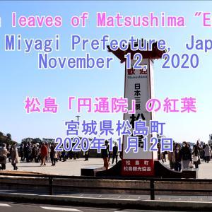 松島町「円通院」の紅葉~自分の【YouTube】動画