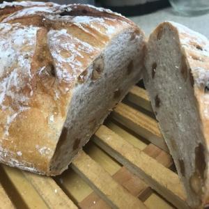美肌、健康におすすめ酒粕を使ったパン!酒粕の効能が素晴らしい!レーズンとナッツパンのレシピも公開!