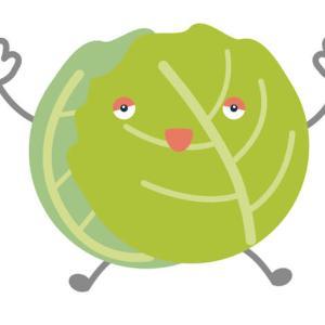 キャベツを毎日100g食べよう!ダイエット効果や抗がん作用もあり!